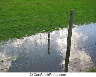 Fence in a flooded meadow