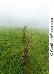Fence in a foggy green grass field