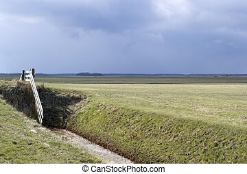 Fence in a meadow on Texel.