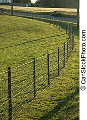 Fence in a meadow