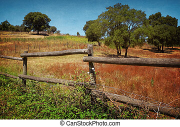 Fence in Countryside