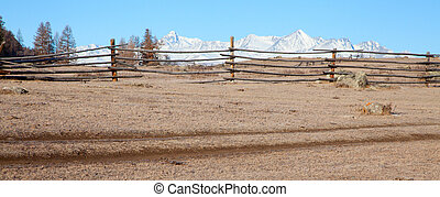 Fence in the foreground