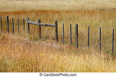 Fence in the prairies
