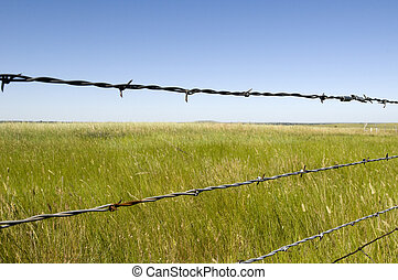 Fence in Wyoming
