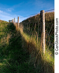 Fence Line - Fence line in a rural setting