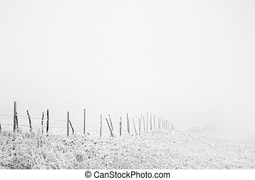 Fence Line - Prairie fence line in fog