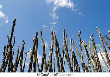 Fence made of tree branches on blue cloudy sky