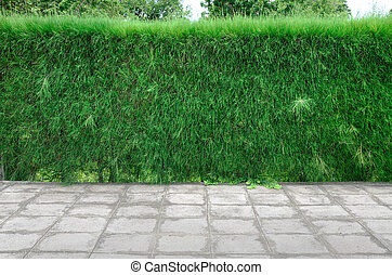 Fence made with green grass.