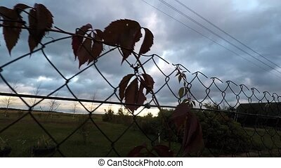 Fence mesh stretched along the perimeter. - Fence mesh...