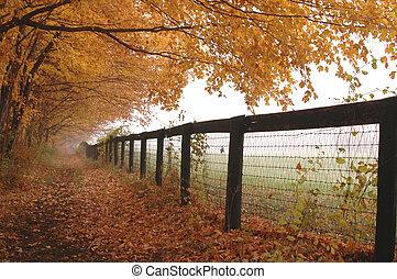 horse farm fence with mist autumn leaves golden