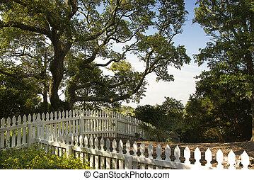 fence., piquet