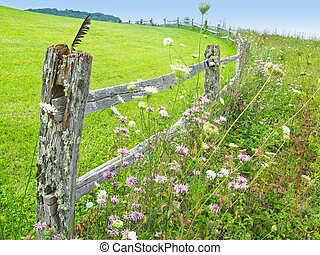 Fence Post - Fence post and meadow near Purchase Knob in the...