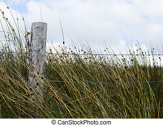 fence post in field