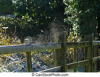 Fence Steaming in Frosty Weather