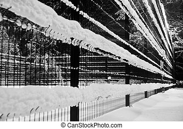 fence under the snow in winter park black and white