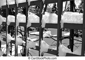 Fence with snow closeup.