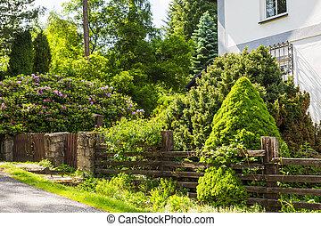 Fenced Backyard garden