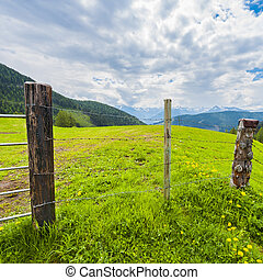 Fenced pasture in Austria