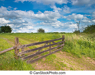 Fenced road in a summer landscape - Entrance gate to a...