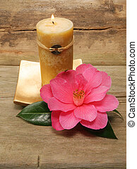 Feng Shui candle and camellia