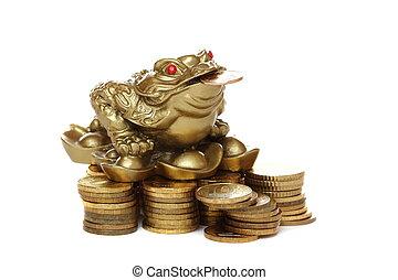 Feng Shui frog sitting on money.