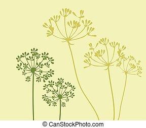 Fennel - vector fennel flower background