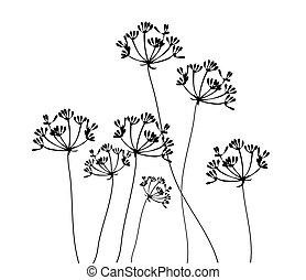 Fennel Flower - fennel flower