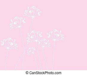 fennel flower background