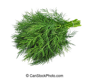Fennel on a white background