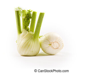 Fennel on white background - photo of fennel on white ...
