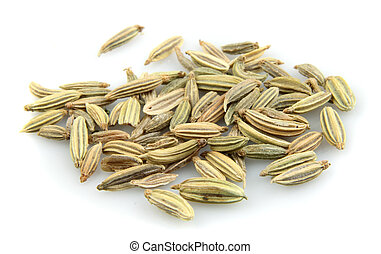 Fennel seeds on a white background