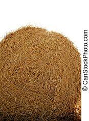 feno, bala redonda, de, secado, trigo, cereal