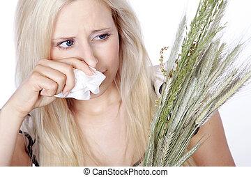 feno, mulher, tem, febre