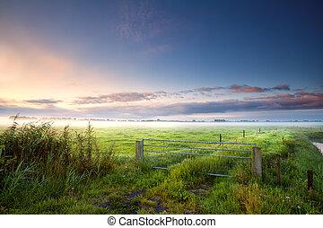 fense on Dutch farmland in misty morning - fense on Dutch...
