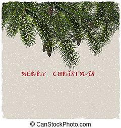 fenyő, elágazik, köszönés kártya, karácsony