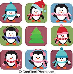 feriado, conjunto, pingüinos