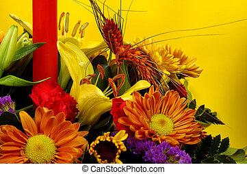 feriado, flores