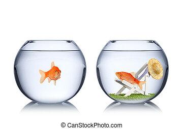 feriado, peixe, conceito