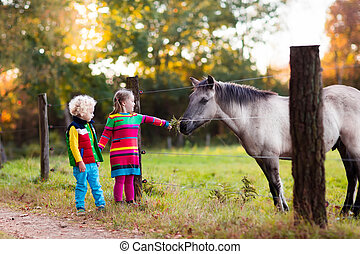 ferme, cheval, alimentation, gosses