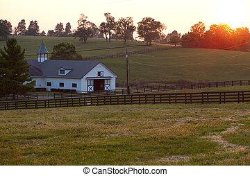 ferme, cheval, coucher soleil