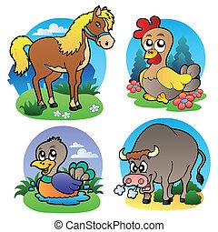 ferme, divers, 2, animaux