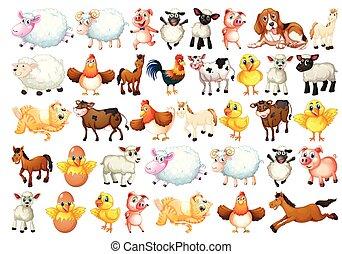 ferme, ensemble, animaux