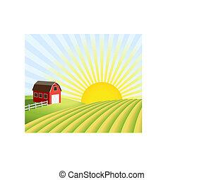 ferme, et, champs, à, levers de soleil