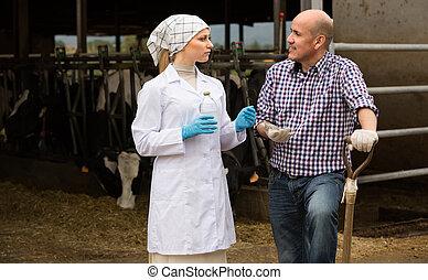 ferme, femme, cowshed., ouvrier, vétérinaire