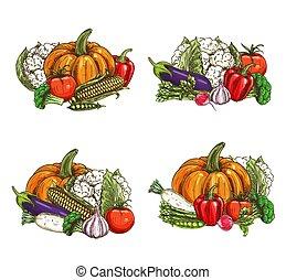 ferme fraîche, nourriture, croquis, légumes, récolte