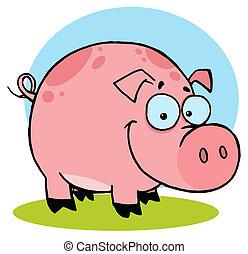 ferme, heureux, taches, cochon