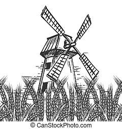 ferme, moulin, blé, paysage
