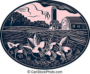 ferme, ovale, fruit, woodcut, canneberge