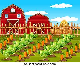 ferme, paysage rural