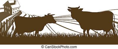 ferme, rouler, vaches, collines, landsca